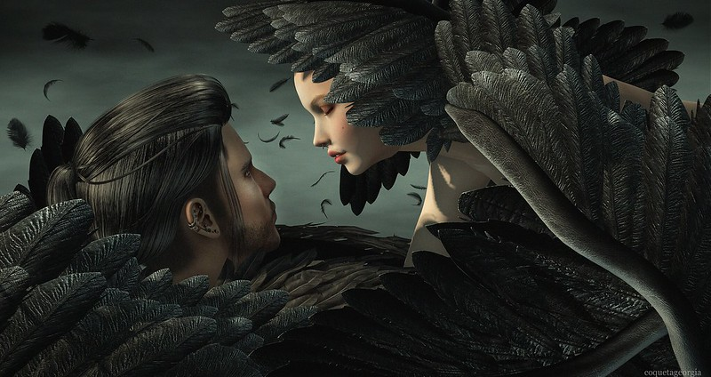 Broken Wings...