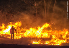 Controlled Burn in Evening, 5 March 2016