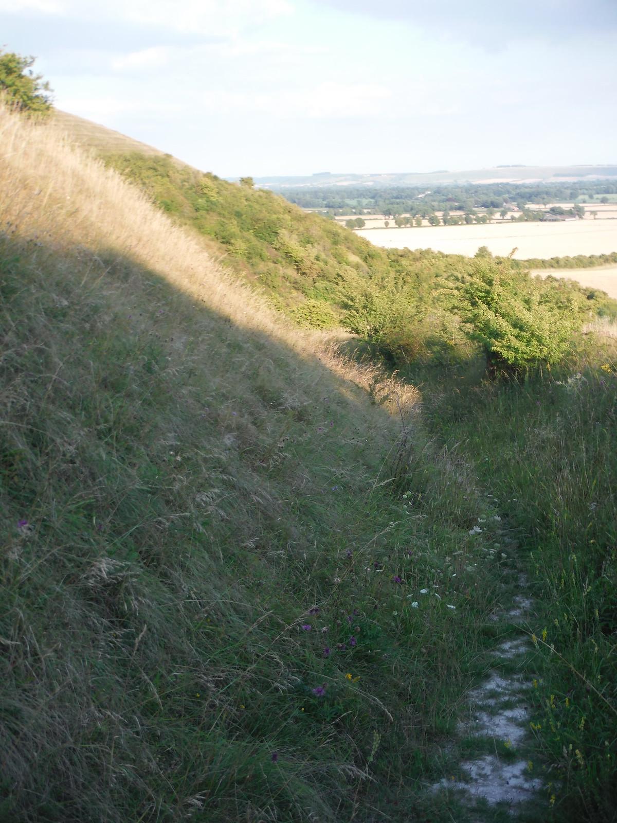 Descent from Knap Hill (Workway Drove) SWC Walk 255 Pewsey or Marlborough Circular via Avebury