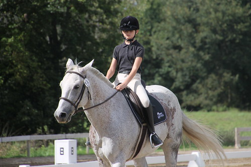 Dressage at Woodbine Schooling Show (September 20, 2015 - Chelsea, Michigan)