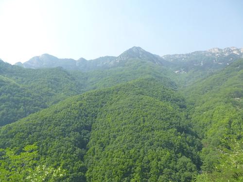 CH-Mont Taishan-Descente-Escalier (14)