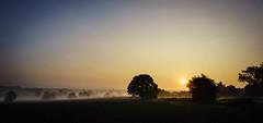 Beaumont Hill Sunrise