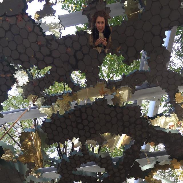 Madison Square Park art installation ✨🌳✨