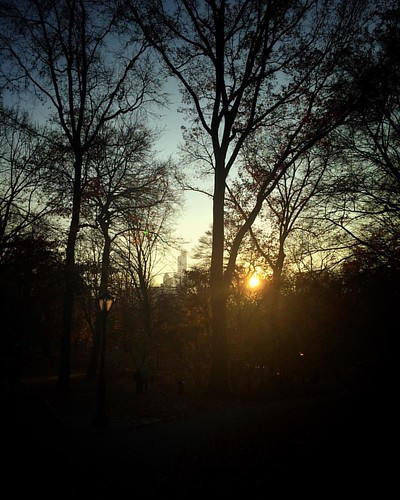 Central Park, 3:43 pm. #igdc #acreativedc #tinjubileeNYC #instanyc #centralpark #shortdays #latergram