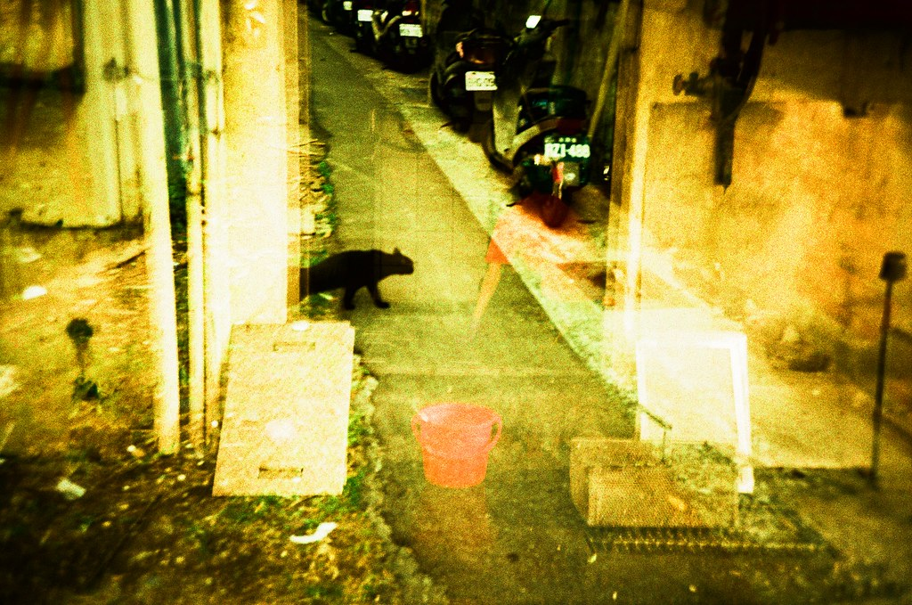 Taipei Street or Dream / RVP50 / Lomo LC-A+ 每次看到黑貓走過去,我都會期待牠出現重複畫面,就是《駭客任務》一樣,系統重制時會出現短暫的重複畫面。  多想活在一個虛構的世界裡。  Lomo LC-A+ FUJICHROME Velvia 50 2015/11/29 - 2015/12/01 4414-0005 Photo by Toomore