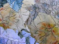 Mon, 01/01/2007 - 00:00 - Exif_JPEG_PICTURE