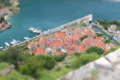 Old Kotor - tiltshift