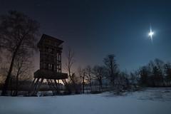 Schollenriet by Night