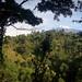 Polska pomoc: Brykiety z biomasy sposobem na ograniczenie wylesiania Kilimandżaro