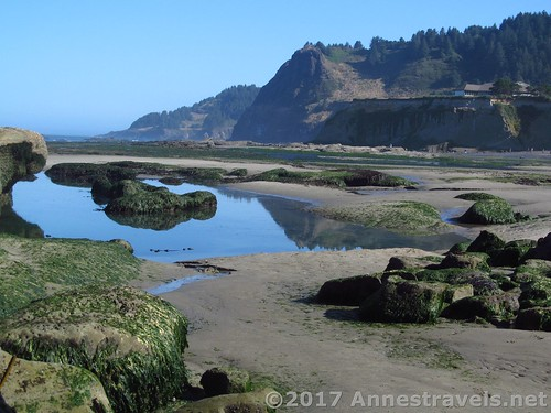 Tide pools at the Punchbowl, Oregon