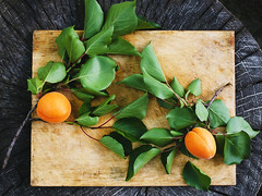 Two branches of apricot with fruits on a wooden bo…
