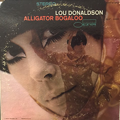 LOU DONALDSON:ALLIGATOR BOGALOO(JACKET A)