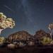 Perseid Meteor Shower by Wobsarazzi.