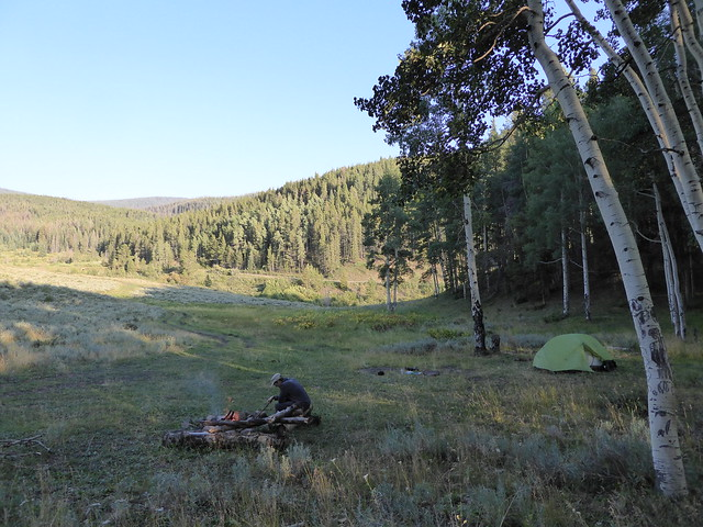Camping amongst the aspens