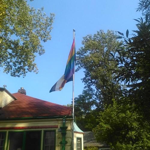 Rainbow and bear flags #toronto #torontoislands #wardsisland #flags #rainbow #bear #lgbt