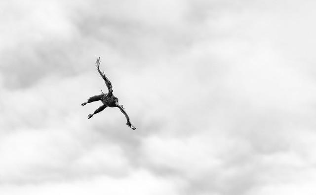 Tilbakeblikk, Lofoten #22