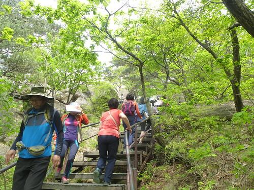 Co-Sokcho-Seoraksan-Sentier pédestre (7)