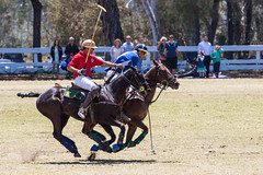 Will Rogers Polo Club - Club Chukkers