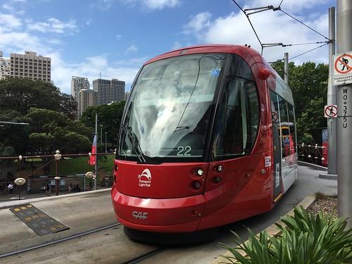 Sydney Light Rail Tram IMG_0490