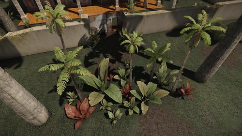 4 More Plants
