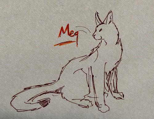 meg-aby