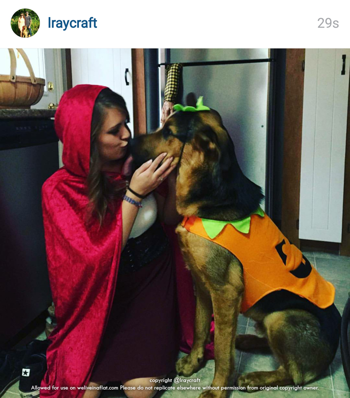 These Sanskari Women Dressed Up For Halloween Will Scare: Who's Not Scary? These 10 Cute Halloween Dogs In Costume