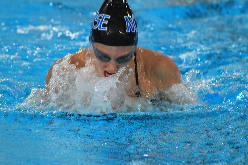 2015 2016 Swimming And Diving Women Luther College