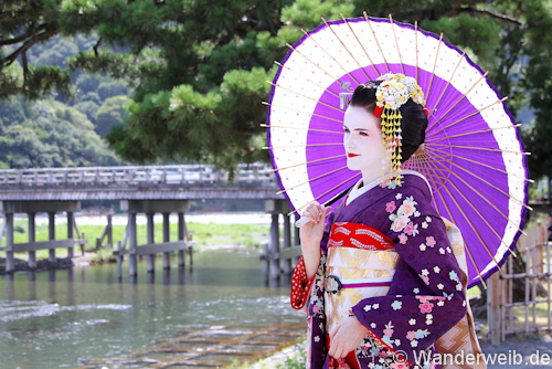 geisha (6 von 13)