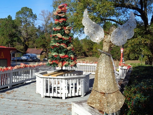 georgia alston montgomerycounty christmas2015