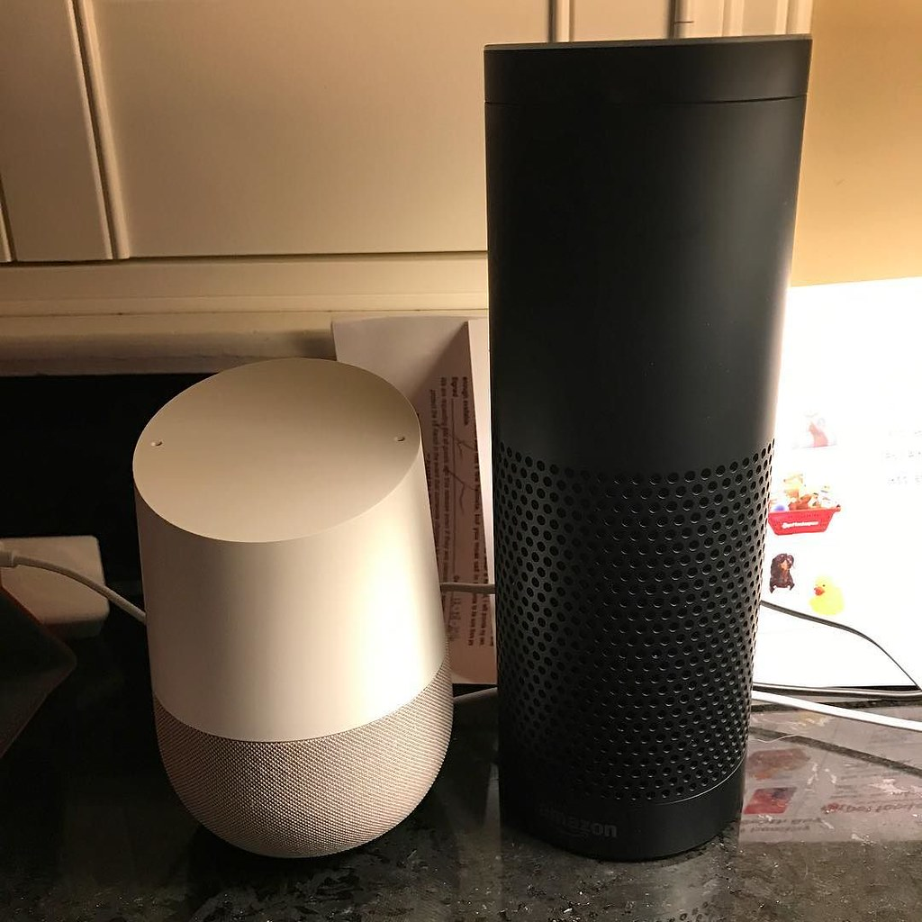 Leker med Amazon Echo OCH Google Home