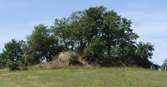 Gaillac-Toulza 31550. Motte castrale d'Arzague