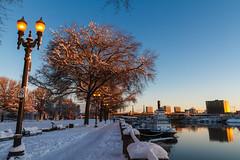 Snow: Waterfront Park