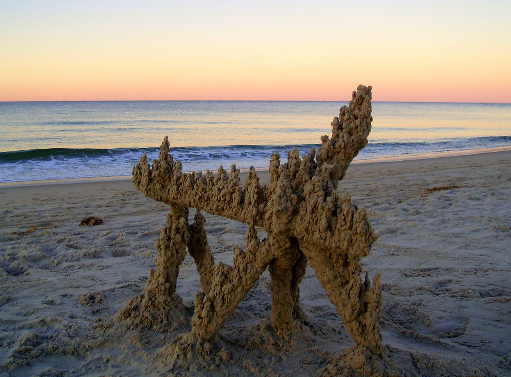 Crane's beach #6