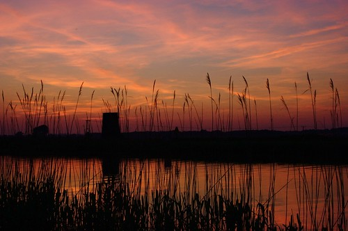 Sunset on the Norfolk Broads