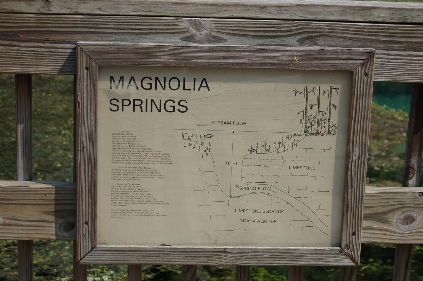 magnolia springs single muslim girls Trails at magnolia springs state park woodpecker woods nature trail this trail's most striking feature is the boardwalk that spans the spring the crystal-clear .