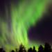Aurora Borealis by Jonas Thomén
