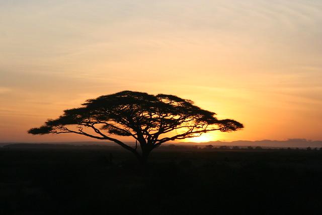 Kenya 2006_0083