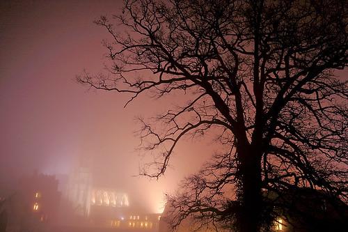 Abbey Night
