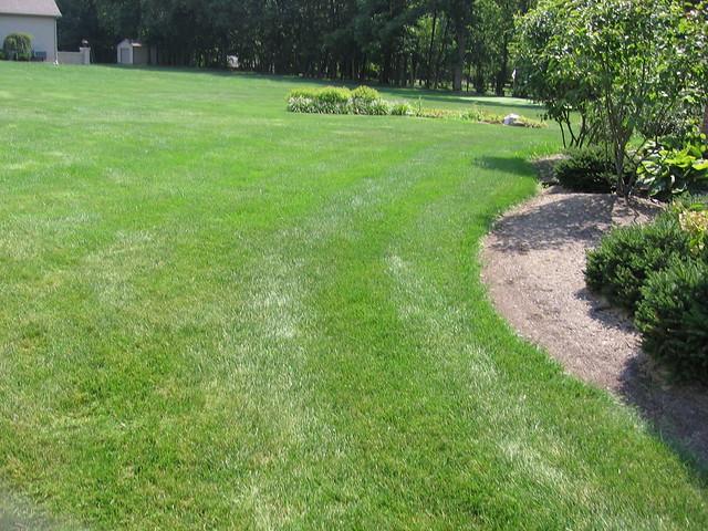 backyard golf course flickr photo sharing