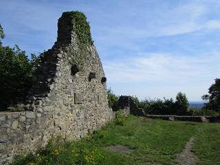 1369 Wanderbild