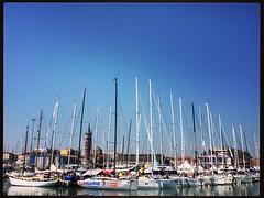 Campionati Italiani Assoluti di Vela d'Altura #vela #mare #barche #civitanova #igers #igerspiceni #igersmarche #igerscivitanova #see #sales #regata