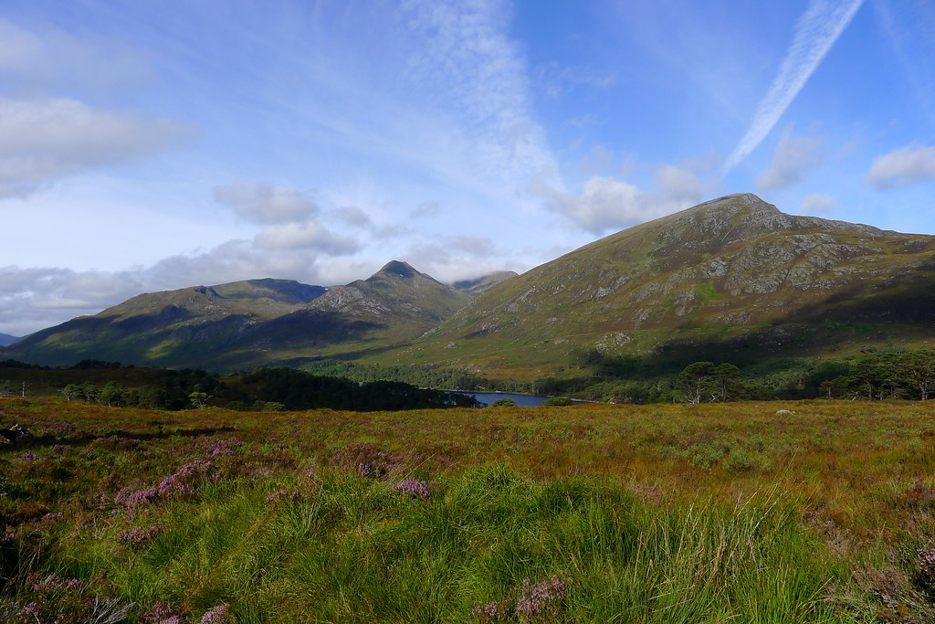 Glen Affric hills, heather and blue sky
