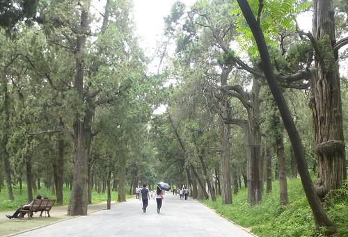 CH-Qufu-Confucius-Cimetière-Entrée (5)