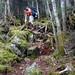 Old Speck West Ascent