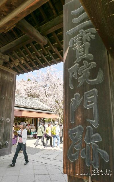 0402D8京都醍醐寺-1160267