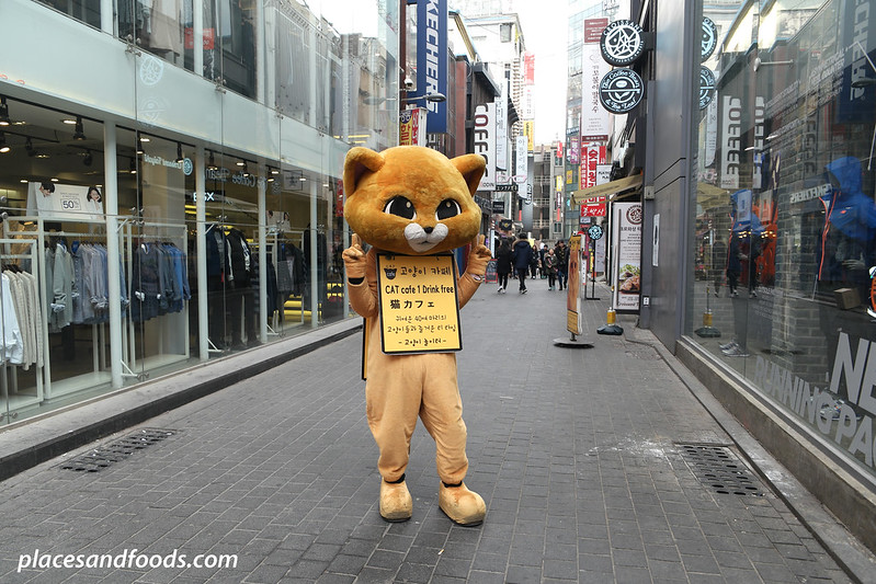 cat cafe playground seoul mascot