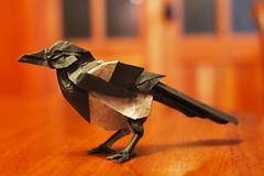 Magpie [Prototype]