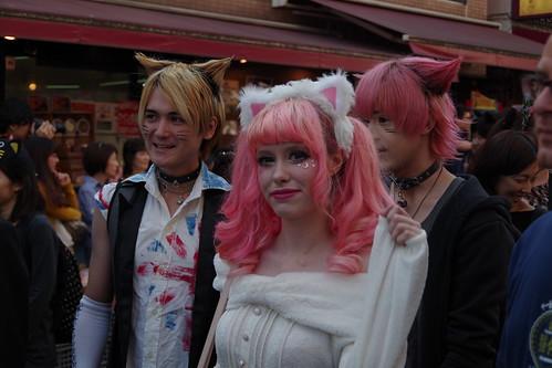Cat's Halloween Parade in Kagurazaka 2015 10