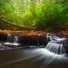 Dreamy Cascades in Sipsey Wilderness - 5654 by J & W Photography