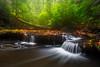 Dreamy Cascades in Sipsey Wilderness - 5654